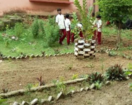 Education-Garden developed by children-jojobera