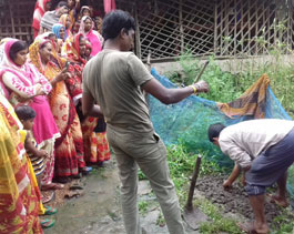 Livelihood n Emp. Vegetable cultivation - Haldia