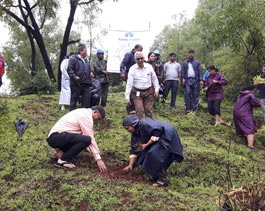 Tree Mittra - Plantation Drive Khopoli