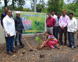 Tree Mittra - Plantation Drive Mulshi