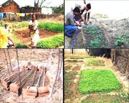 Agriculture Promotion Program