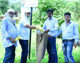Bhira Cleanliness Drive